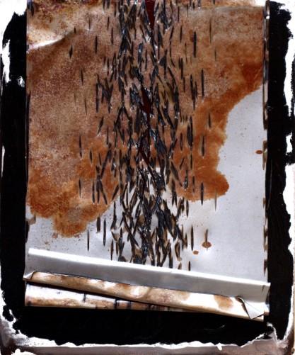 thumbnail_iron-parchment-series-2