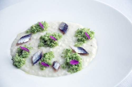Risotto-broccoli-e-alici-Ph.-Sara-DIncalci-3-500x333